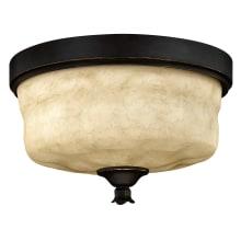 Hinkley Lighting H3501