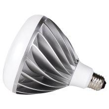 Sea Gull Lighting 97421S