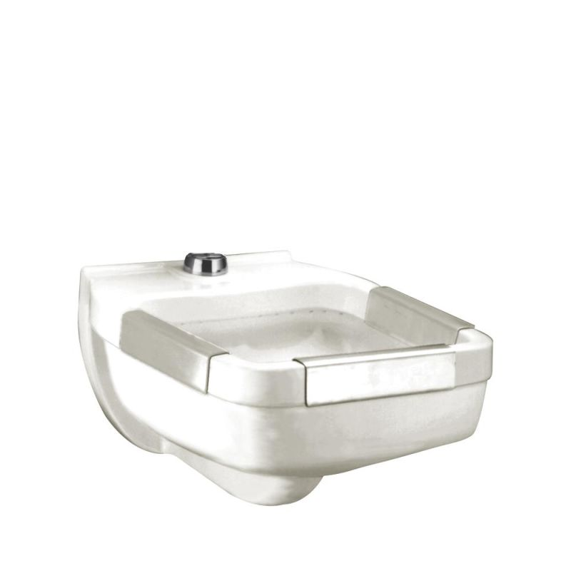 ... Clinic Service Vitreous China Wall-Hung Utility Sink with Flushing Rim