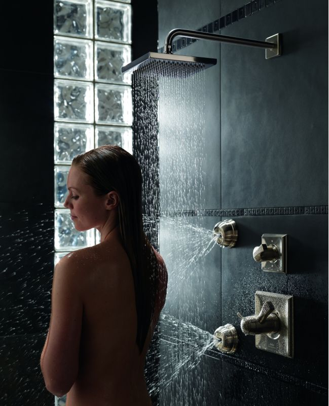 dryden monitor 17 series shower system ch in