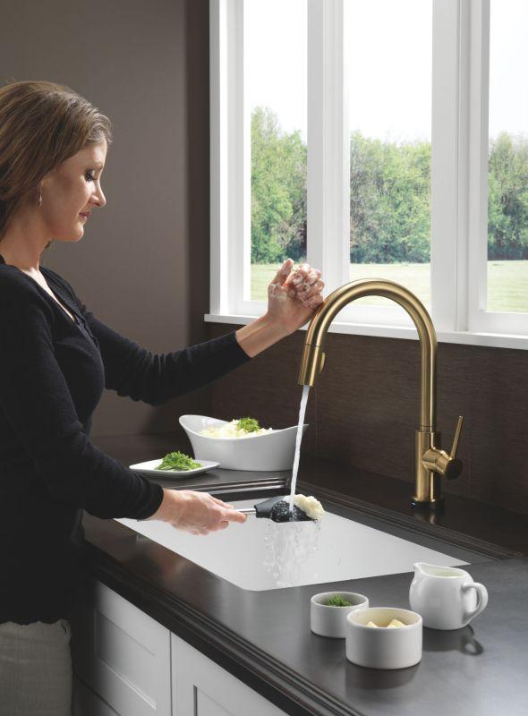 Delta 9159T-DST Trinsic Kitchen Faucet