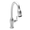 Shop Newport Brass Kitchen Sink Faucets